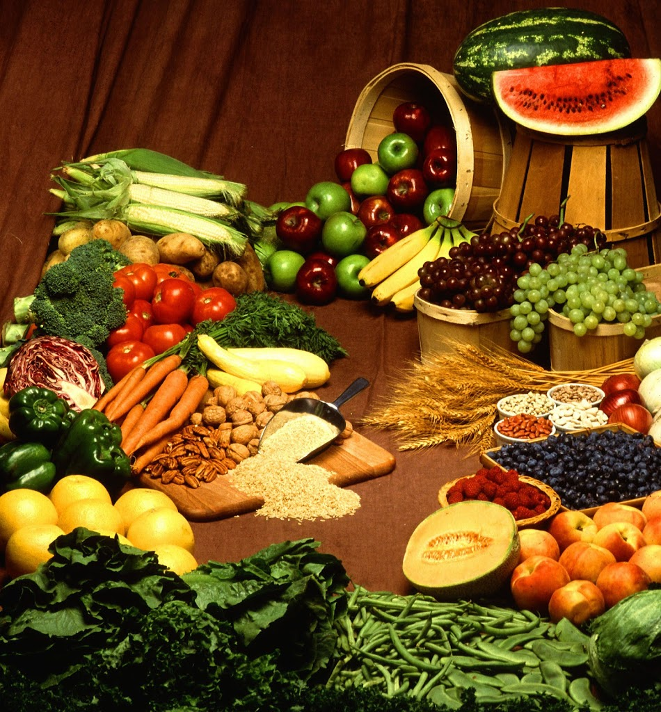 advantages and disadvantages of dieting how to choose a diet advantages of dieting