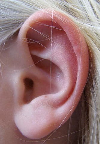dry skin behind ear
