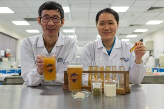 Probiotic beers