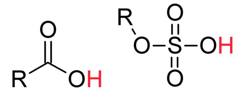 Difference between organic and inorganic acids ~ LORECENTRAL