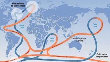 The global circulation or thermohaline begins with the transfer of cold and warm waters in the North Atlantic. IPCC